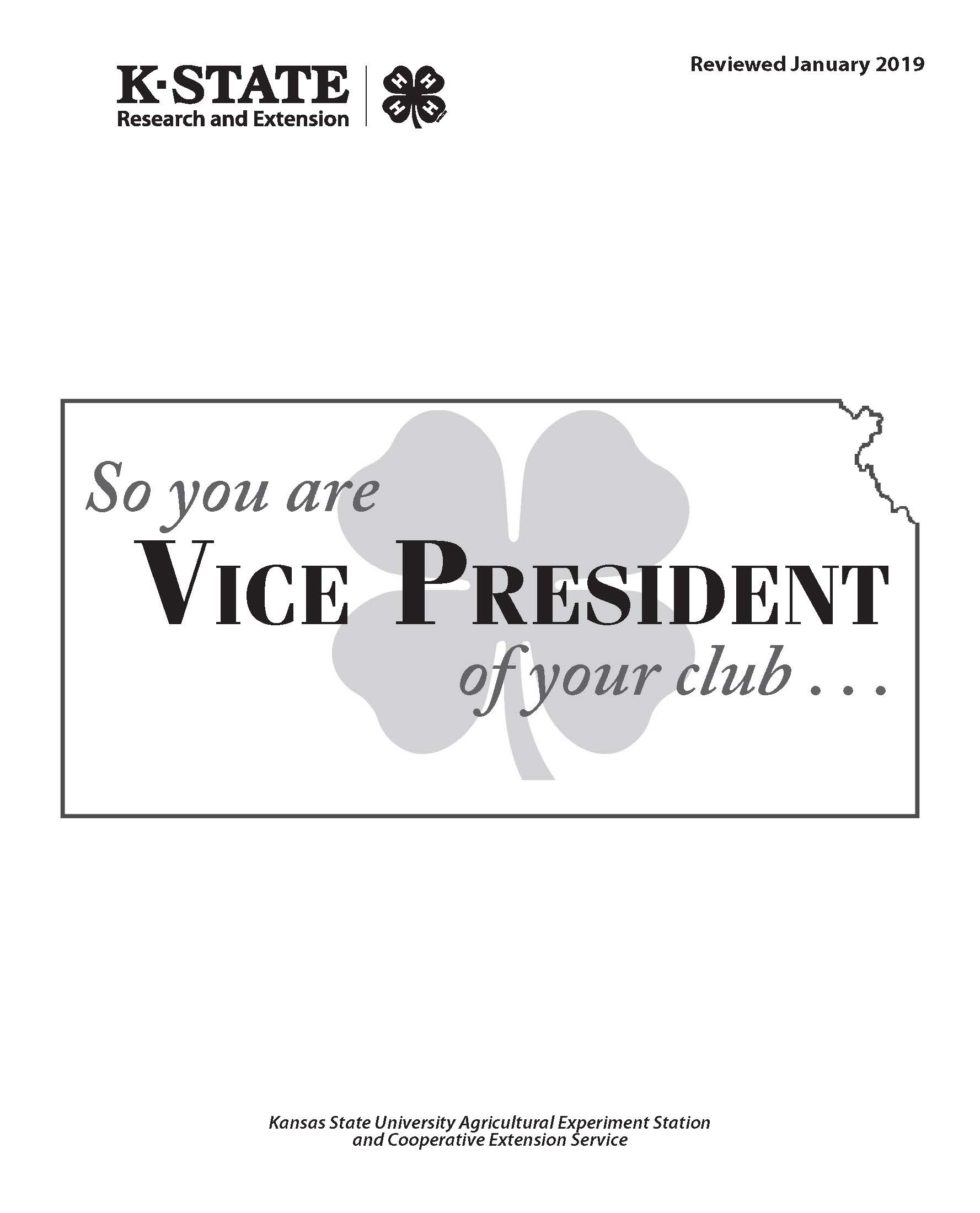 So you are Vice President of your club