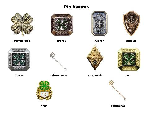 Pin Award Pictures