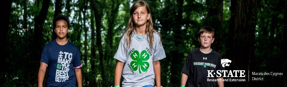 3 kids for 4-H